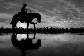 bw cowboy