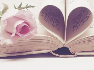 rose-book PlushDesignStudio Pixabay